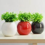 Bình hoa đặt trong phòng khách có liên quan đến tình cảm, hôn nhân, sự nghiệp, sức khỏe của gia chủ